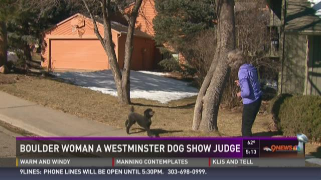 Boulder woman a Westminster dog show judge