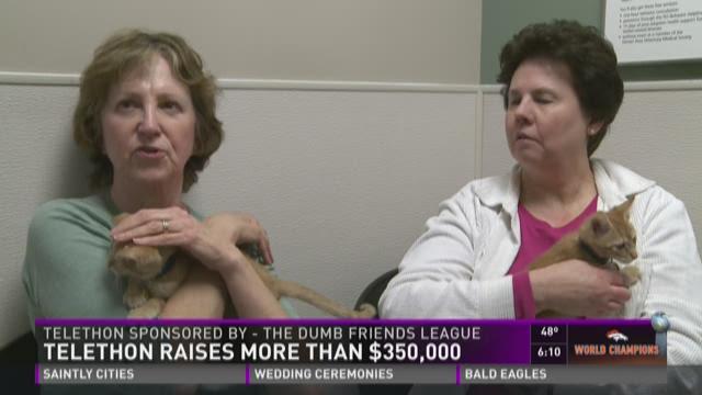 Telethon raises more than $350,000